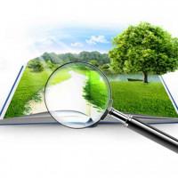Значение кадастровой стоимости земельного участка