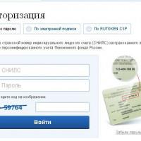 Особенности получения и значение СНИЛС для россиян, а также иностранцев