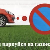 Порядок наложения и размер штрафа за парковку на газоне