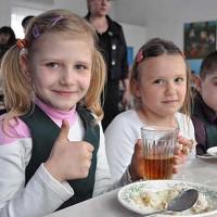 Кому положено бесплатное питание в школе?