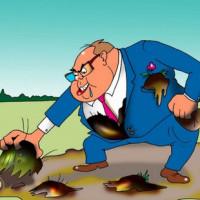 Виды уголовной ответственности за земельные правонарушения