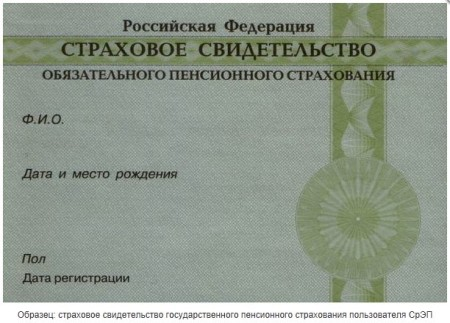 Оформления документов и выдача СНИЛС