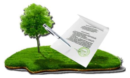 Документы на оформление земельного участка - инструкция