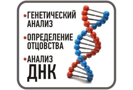 тест ДНК для установления отцовства