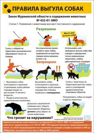 закон о правилах выгула собак