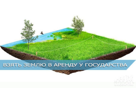 как арендовать земельный участок у государства